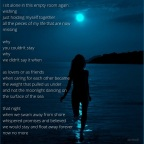 moonlight swimmers